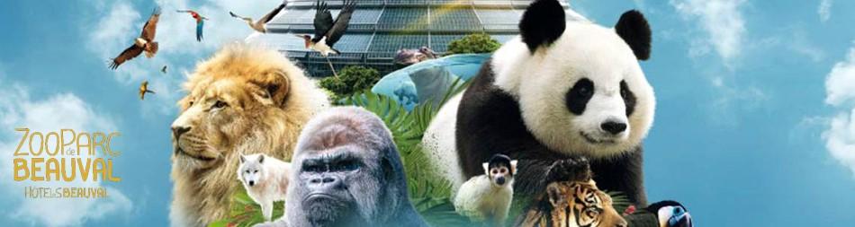Le ZooParc De Beauval Retient Timesquare V.2 Pour Planifier 1000 Employés Au Plus Fort De La Saison Touristique